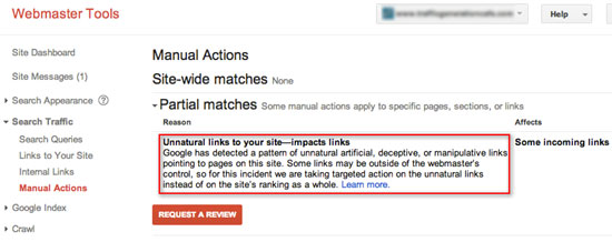 Sample Google Unnatural Links Manual Action