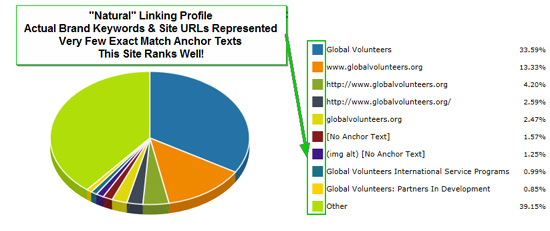 Natural Anchor Text Profile Example