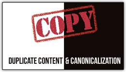 Duplicate Content Canonical Graphic